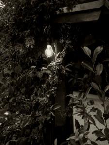 家の角に味のある燈火